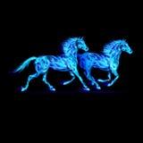 Chevaux bleus du feu. illustration libre de droits