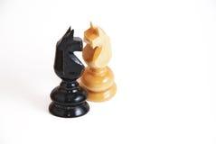 Chevaux d'échecs dans l'amour Photographie stock
