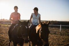 Chevaux d'équitation femelles d'amis contre le ciel Photos stock