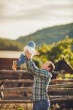 Chevaux de alimentation de famille dans un pré Image stock