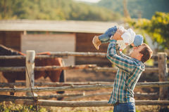 Chevaux de alimentation de famille dans un pré Images libres de droits