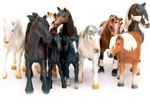 chevaux de groupe Image libre de droits