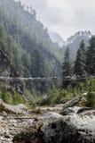 Chevaux de l'Himalaya sur le pont de corde Photographie stock