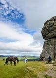 Chevaux et grimpeurs chez Haytor Vale, Dartmoor (mode hauteur) Images stock