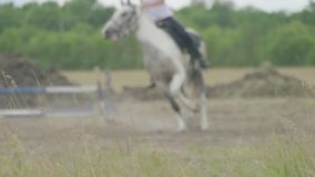Chevaux et jockeys de course sautant par-dessus un obstacle Effet de tache floue banque de vidéos