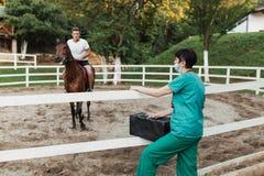 Chevaux et travail vétérinaire photos stock
