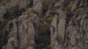 Chevaux frôlant sur une pente de montagne dans un paysage déboisé stérile sous une grande formation de nuage projectile Cheval bl banque de vidéos