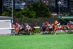 Chevaux montés par des jockeys courant rapidement pendant la course Efforts à la victoire Image horizontale brouillée par mouveme Photo libre de droits