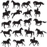 chevaux réglés Photo libre de droits