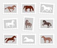 chevaux réglés Image stock