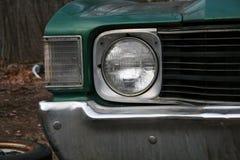 Chevelle solides solubles Image libre de droits