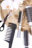 Cheveu Photographie stock libre de droits