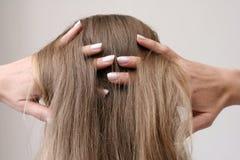 Cheveu Photographie stock