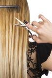 Cheveu blond Image libre de droits