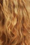 Cheveu blond Photos stock