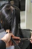 Cheveu de découpage Image libre de droits