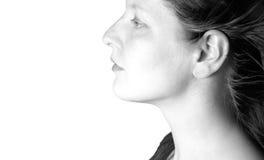 Cheveu de soufflement II Photo stock