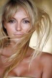 Cheveu léger Photographie stock libre de droits