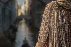 cheveux avec des tresses Images stock