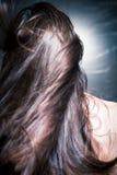 Cheveux brillants dans le mouvement photos libres de droits