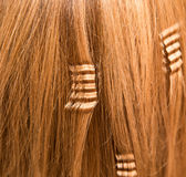 Cheveux comme fond Images stock