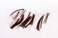 Cheveux découpés Images libres de droits