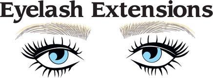 Cheveux d'extentions et d'eyebronws d'Eyelsah illustration de vecteur