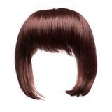 Cheveux de Brown d'isolement Photo stock