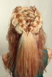 Cheveux de la fille et des tresses rassemblés Photos stock