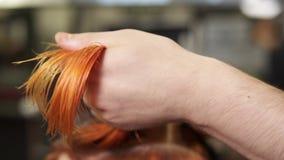 Cheveux masculins élégants du ` s de femme de coupe de coiffeur dans le salon de beauté tout en tenant une mèche des cheveux dans banque de vidéos