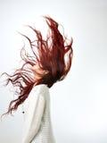 Cheveux rouges de femmes asiatiques longs de mode moderne Image libre de droits