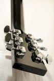Chevilles de guitare Images libres de droits