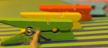 Chevilles en bois multicolores Images stock