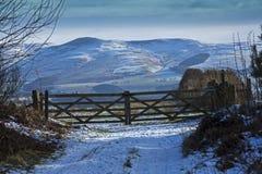Cheviot-Heuvels, Northumberland Royalty-vrije Stock Afbeeldingen