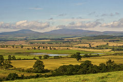 The Cheviot Hills. The beautiful countryside of North Northumberland UK looking West to the National Park and The Cheviot Hills. The hill in the centre is The Royalty Free Stock Photography