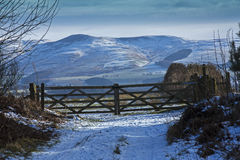 Cheviot Hills, Northumberland. A view of the Cheviot Hills, covered in snow, in Northumberland. England. Photo taken from the Scottish side of the border Royalty Free Stock Images