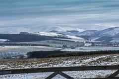 Cheviot Hills, Northumberland Stock Photos