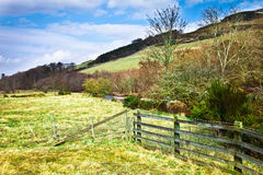 Cheviot Hills Royalty Free Stock Photography
