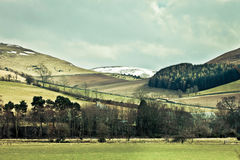 Cheviot Hills Royalty Free Stock Images