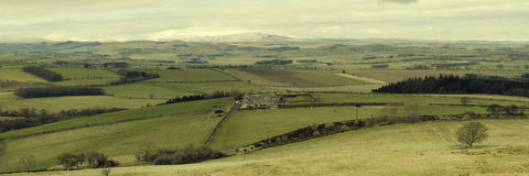Cheviot Panorama Royalty Free Stock Image