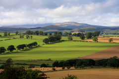 Cheviots Hill Stock Images