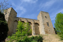 Chevreuse Royalty Free Stock Photos