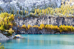 Chevril lake. A pale blue lake surrounded by yellow larch trees Stock Photo