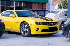 Желтый цвет Chevrolet Camaro с черными нашивками стоковые фотографии rf