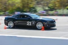 Chevrolet Camaro in autocross Royalty-vrije Stock Afbeeldingen