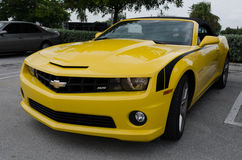 Chevrolet Camaro de pointe jaune solides solubles convertible Photo libre de droits