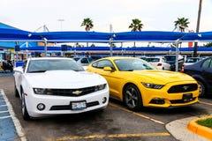 Chevrolet Camaro en Ford Mustang Stock Afbeelding