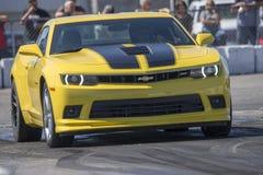 Chevrolet-camaro op het spoor Stock Fotografie