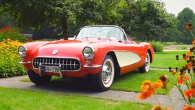 Chevrolet Corvette C1 classic sports car stock video footage