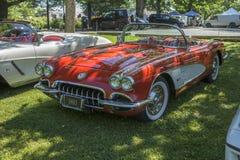 Chevrolet Corvette Kabriolett lizenzfreie stockfotografie